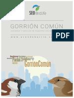 Informe_gorrion_AvesDeBarrio
