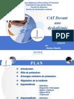 391615827-CAT-Dyskaliemie.pptx