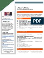 CV de Miguel Gil Rosas