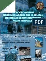 TRATAMIENTO BIOLOGICO AGUAS RESIDUALES