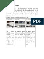 RESULTADOS E DISCUSSÃO - Pilhas Eletroquímicas - GRUPO 10