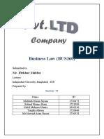 BUS360 Report on PVT LTD (Final).docx