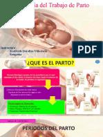 FISIOLOGIA DEL PARTO-KATIFERTH