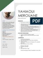 yahiaoui merouane cv