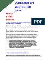 EFI Multec 700 - 1