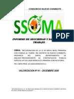 INFORME DE SEGURIDAD Y SALUD - DICIEMBRE