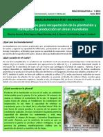 HDn.7-2015Manejo-post_inundacion_CORBANA