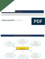 Nueva Ley Procesal del Trabajo Vision general (Pizarro) fines
