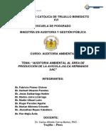 TRABAJO DE AUDITORIA AMBIENTAL