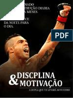 008 Disciplina e Motivação caminhando para o sucesso-convertido.pdf