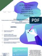 SESION 1. LA PRODUCTIVIDAD Y EL RIESGO PSICOSOCIAL O DERIVADO DE LA ORGANIZACIÓN DEL TRABAJO
