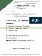 PRINCIPIO DE OPORTUNIDAD