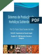 Sistemas de Producao de Hortalicas Subterraneas_versaoB [Modo de Compatibilidade].pdf
