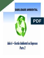Aula 06 - RAMBSOC - Negócios e Meio Ambiente - P2 - MB [Modo de Compatibilidade].pdf