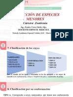 3. Clase 4. Semana 2 UNIDAD I _Clasificación (1)