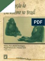 A recepcao do Dawnismo no Brasil