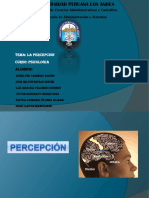 GRUPO 3 -PERCEPCION-.pdf
