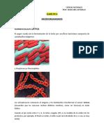 4 MICROORGANISMOS, GENERALIDADES Y USOS