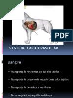 2.Sistema_cardiovascular