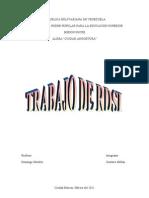 Resumen-de-RDSI