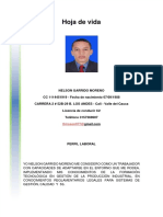 NELSON GARRIDO TCC