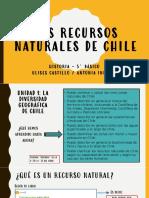 5 Presentacin Los Recursos Naturales de Chile 1