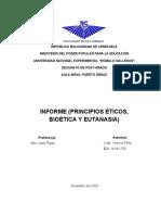 Informe - Yesicca Peña