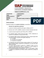 practica n°1 termo.pdf