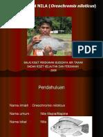 Budidaya Ikan Nila-TRUBUS