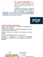 4ta-CLASE-LIQUIDO-CEFALORRAQUIDIO-Y-SINOVIAL
