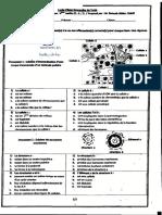 _devoir_de_synthese_n1-Bac-sciences_SVT--M.Baouab +M.Cherif-lycee pilote bourghuiba