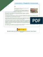Biologia Molecular y citogenetica tema 2