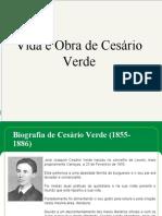 56090191-cesario-verde