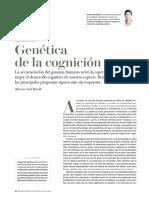 Genetica de la cognicion