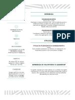 CV colorato e intuitivo