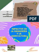 IMPACTOS DE LA GANADERIA Y AGRICULTURA