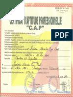 Certificat de Ugo0001