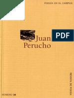 Juan Perucho.pdf