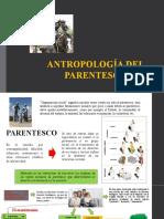 Antropología del parentesco