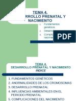 diapositivas_tema_4_desarrollo_prenatal