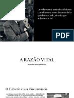 Apresentação Final Ortega Y Gasset II