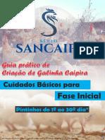Cuidados Básicos na Fase Inicial - Pintinhos - 1ª EDIÇÃO.pdf
