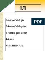 IRM - Bases.pdf