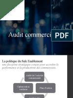 Audit commercial