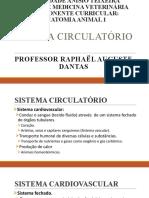 Sistema circulatório 2020 alunos