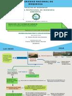 Produccion Uso y Control de Calidad de Hongos Entomopatogenos