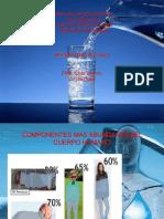 metabolismo del agua norys