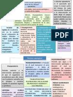 Tiempos operatorios y periodos quirurgicos.pptx