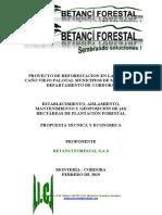 Propuesta de Reforestación - Caño Viejo Palotal