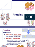 proteins_Report